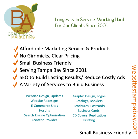 Business plan writing services tampa