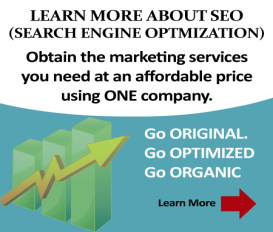 Search Engine Optimization Tampa, Florida
