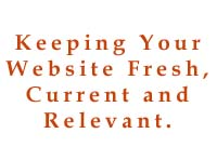 Affordable content providers, website design tampa